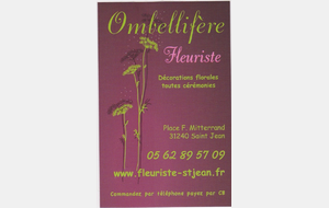 Ombellifère